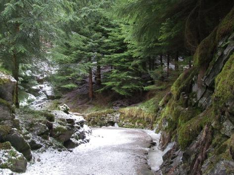 walking down the mountain..