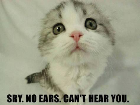No ears!